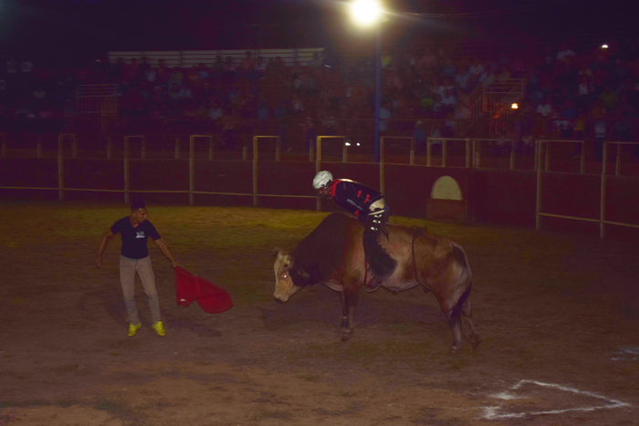 A bull rider at the Fiestas de Nosara, a fair and rodeo held in late January.