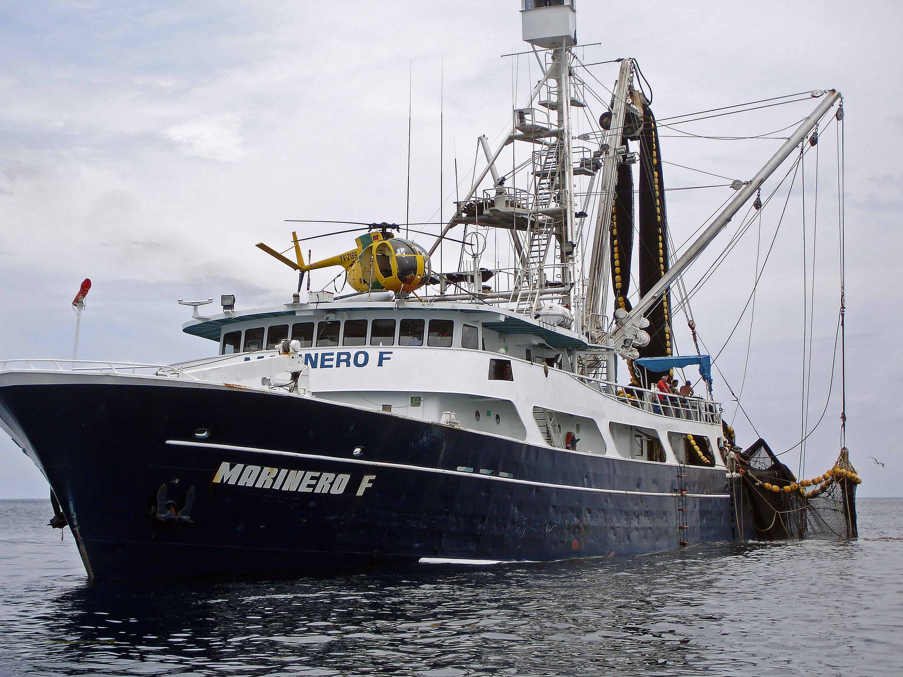 Tuna company fishermen and environmental groups squabble for Large fishing boats