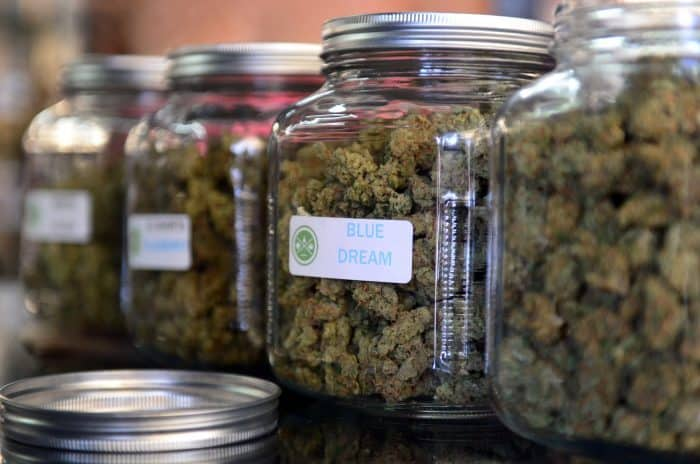 """The highly-rated strain of medical marijuana """"Blue Dream."""""""