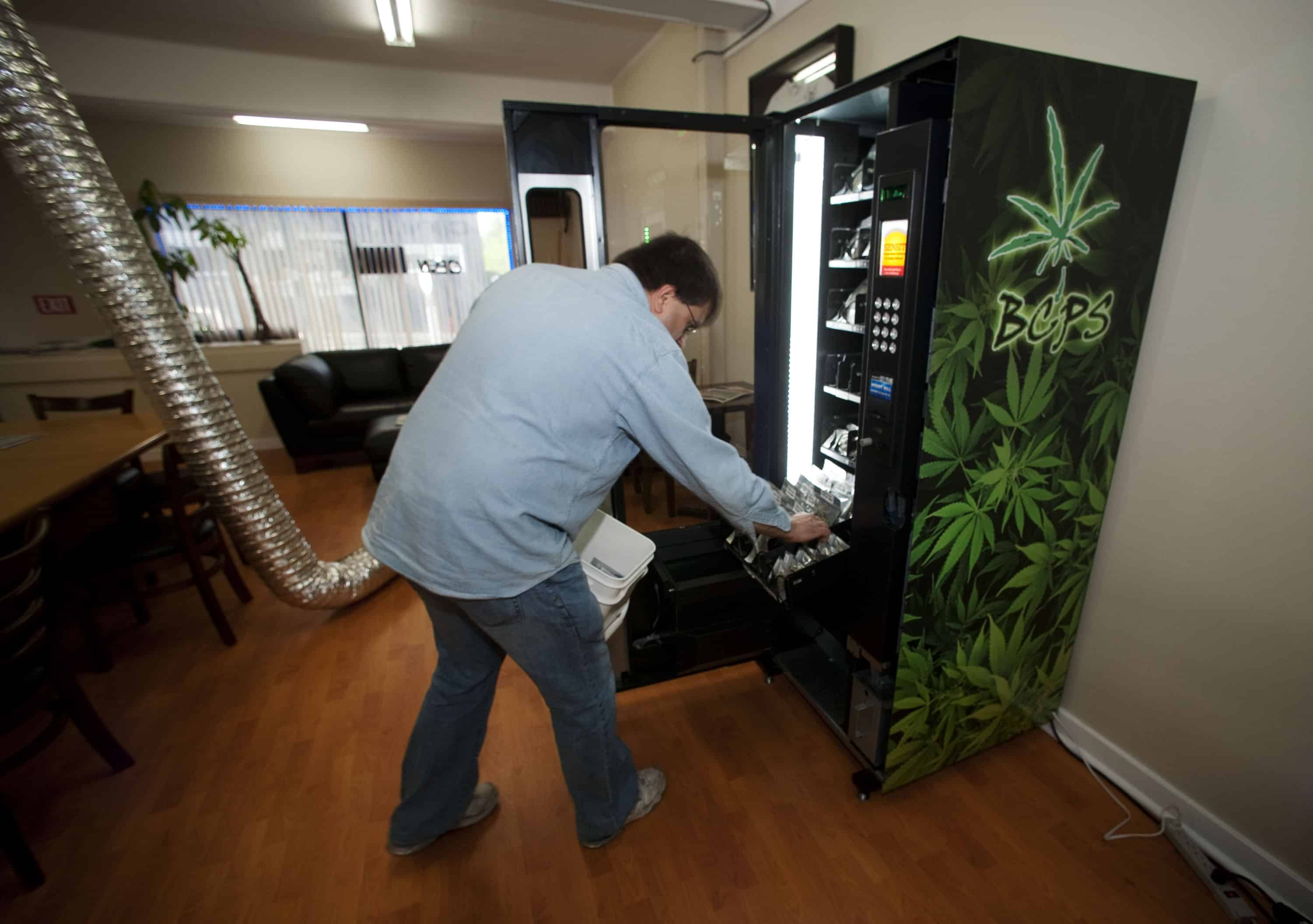 photo essay marijuana legalization in the tico medical marijuana opponents most powerful argument is at odds a mountain of research