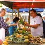 New Saturday afternoon organic market to open in Zapote