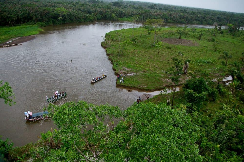 The San Juan River near the disputed Isla Calero wetland.