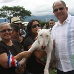 President Solís promises to submit bill in December against animal abuse