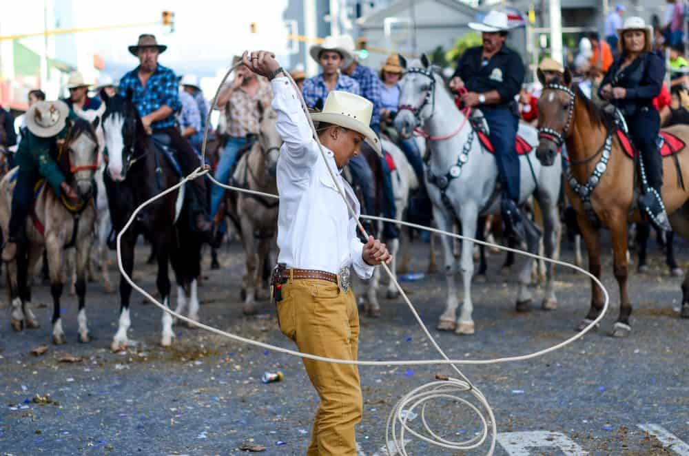 National Horse Parade 2014