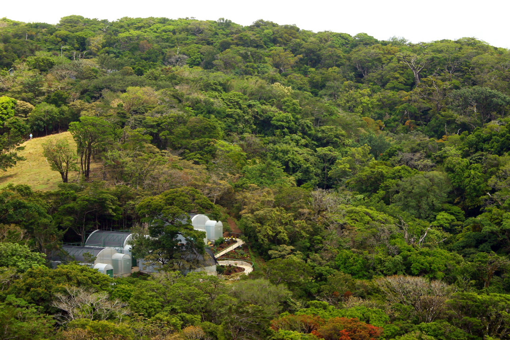 Butterfly Garden at Monteverde