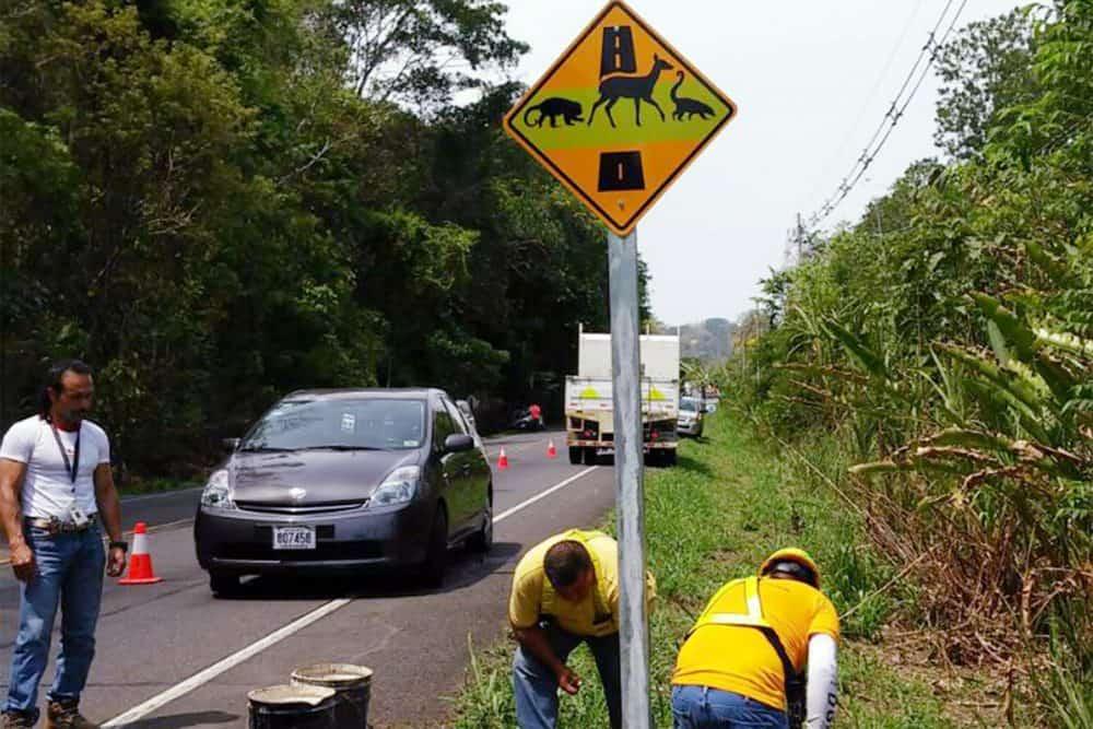 New wildlife crossing sign