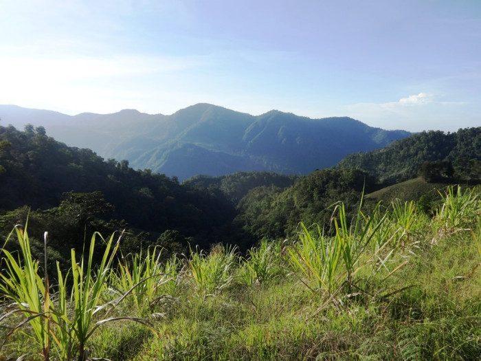 View from a finca in La Lira de P‡ramo, southern Los Santos District