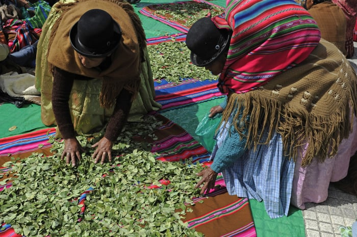 "Aymara women sell coca leaves during the celebration of the national day of ""acullico"" -- the practice of coca chewing -- at the Villaroel square in La Paz, Bolivia."