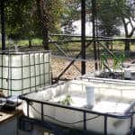 Costa Rica experiments with aquaponics to fight drought