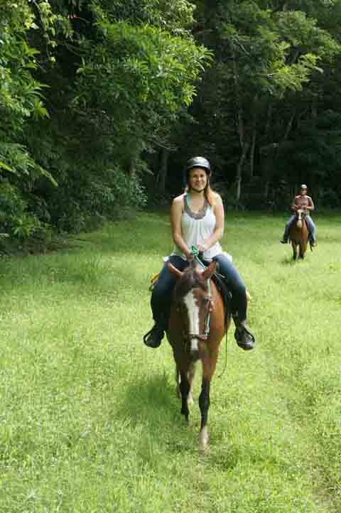 Horse tours lead through a 600-hectare farm.