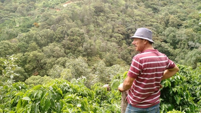 Owner Enrique Navarro Sr. looks over part of Beneficio Monte Copey's coffee farm in Dota Tarrazú.