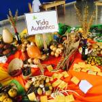 'Free Seed Festival' promotes empowerment and healthy living