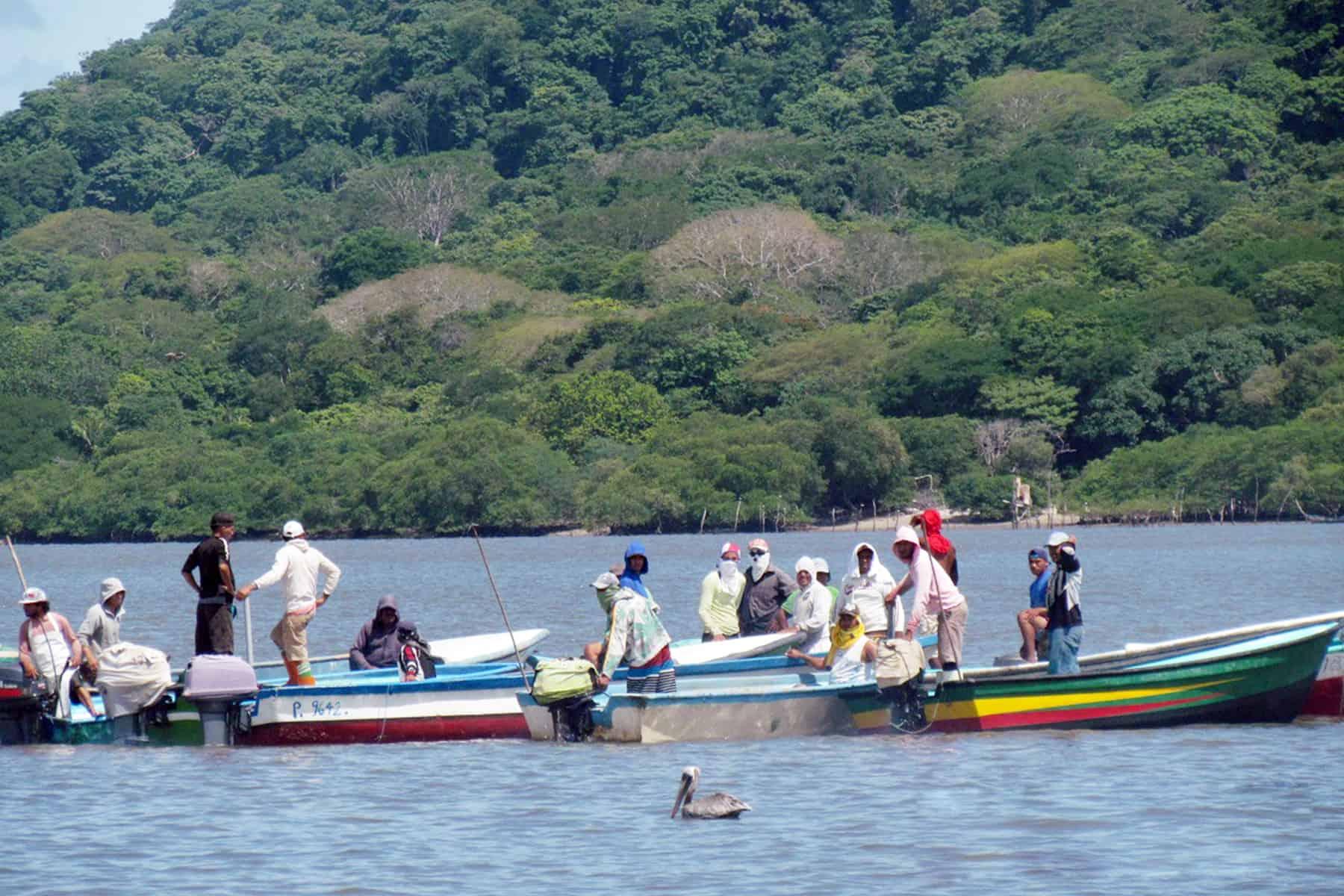 Illegal fishing lines at Puntarenas