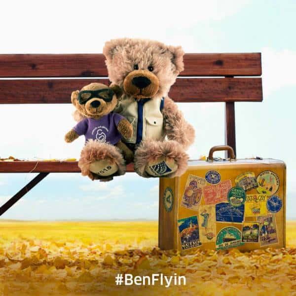 Travel bear PR campaign.