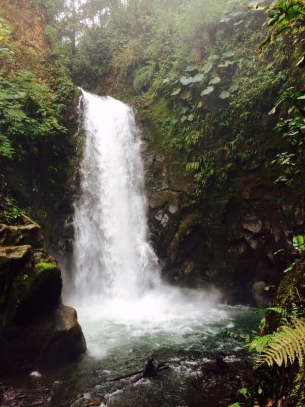 La Paz Waterfall Gardens is the most visited private park in Costa Rica.