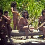 What should countries do about the Amazon's 'uncontacted' tribes?