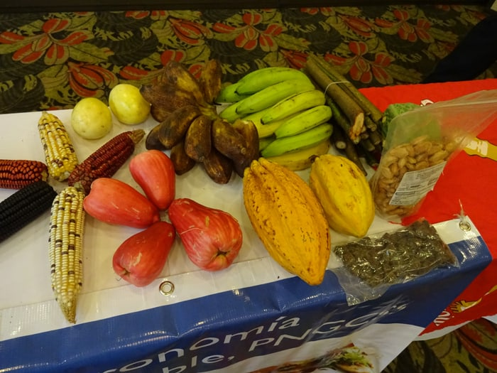 Some nontraditional local foods on display at a CACORE news conference Tuesday.