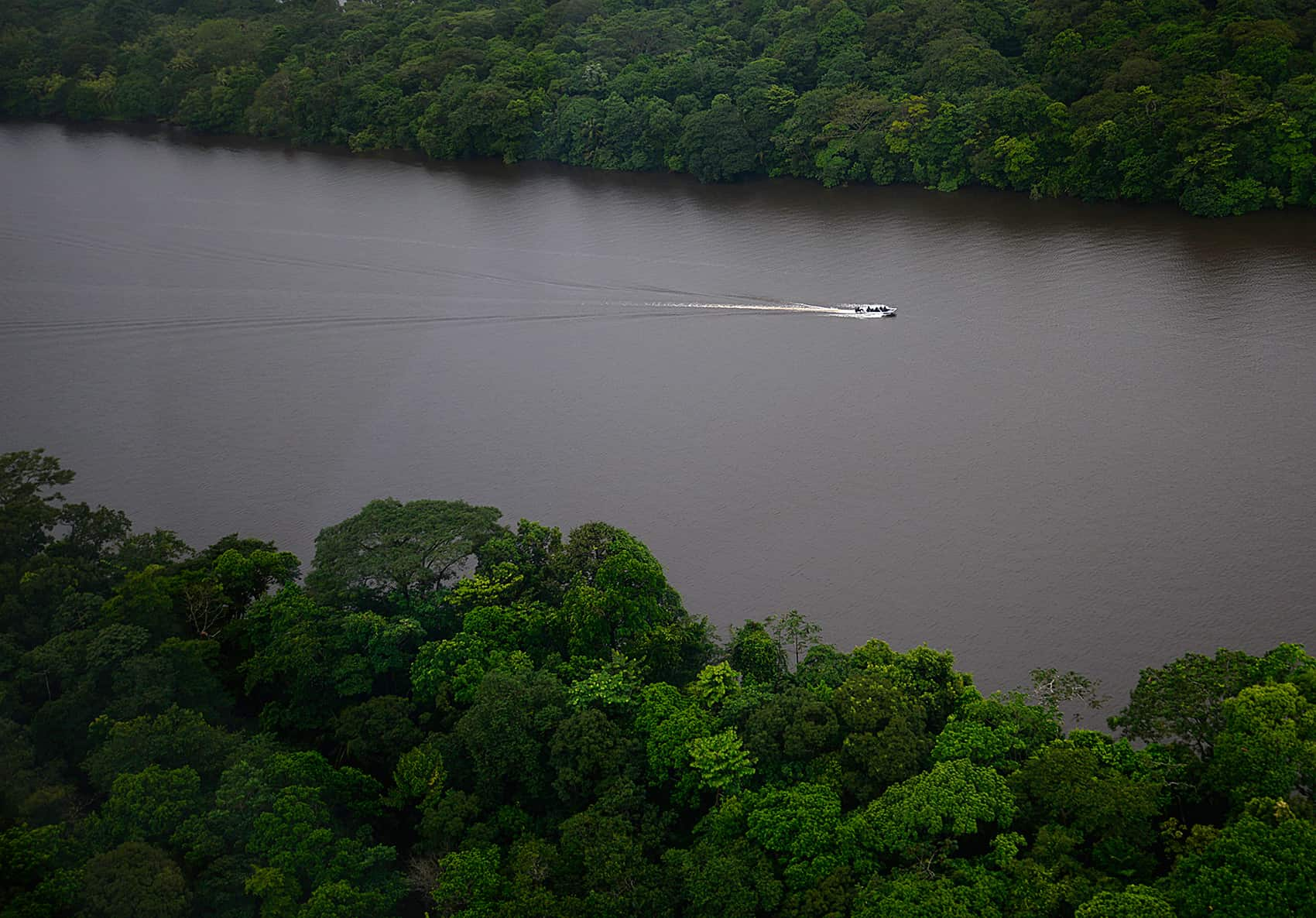 Tortuguero National Park from above.