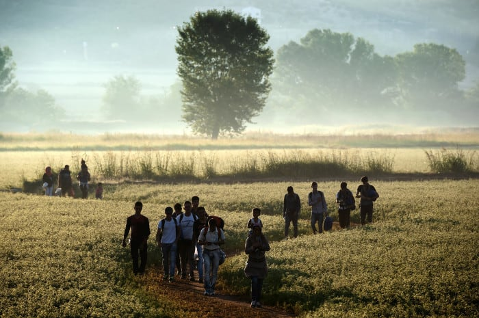 Migrants walk through a field to cross the border from Greece to Macedonia near the Greek village of Idomeni on Aug. 29, 2015.