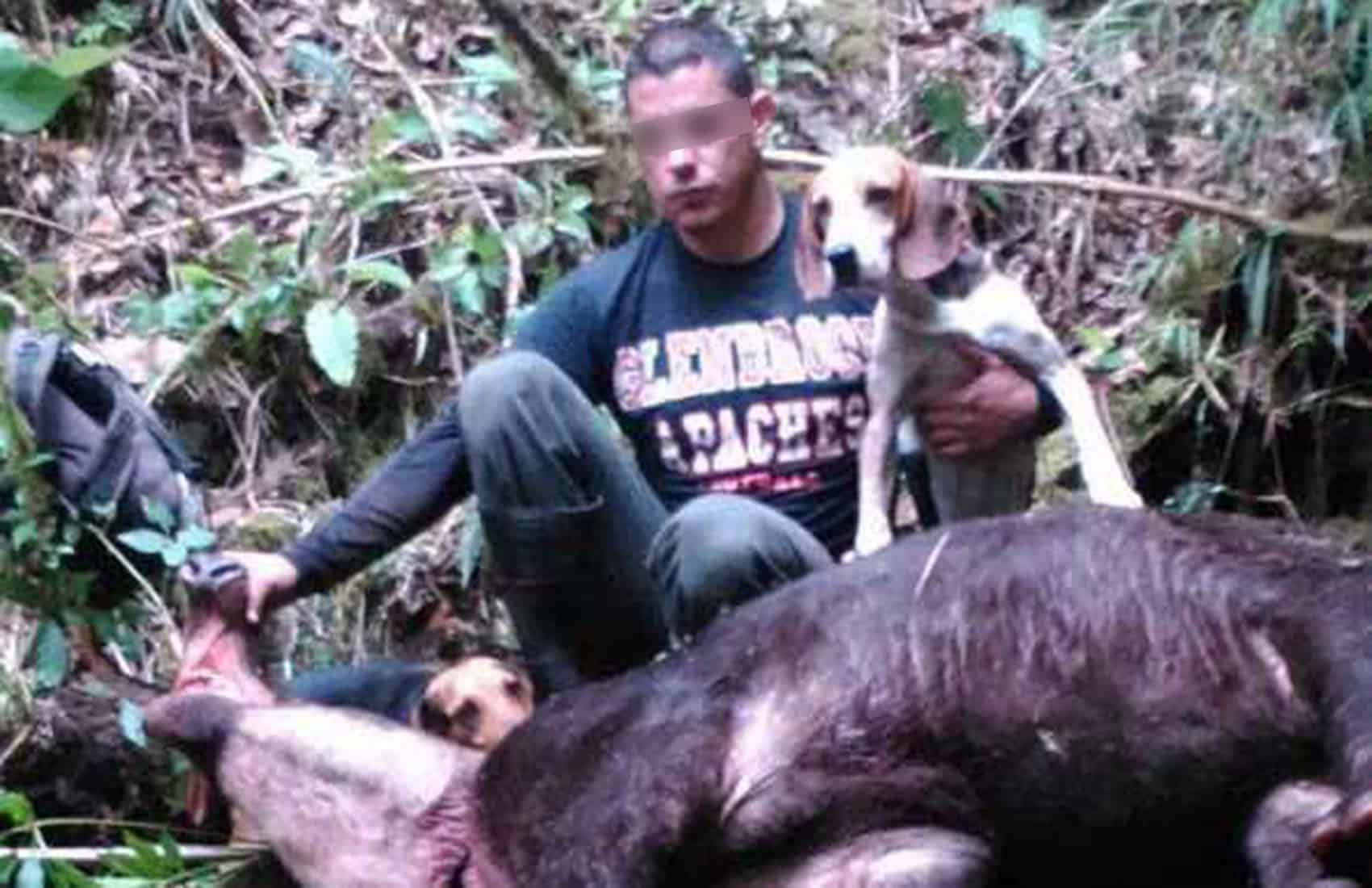 A poacher poses with a dead tapir.