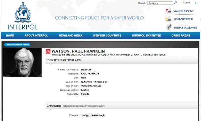 Interpol Paul Watson notice
