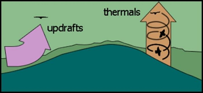 Diagram of updrafts and thermals.