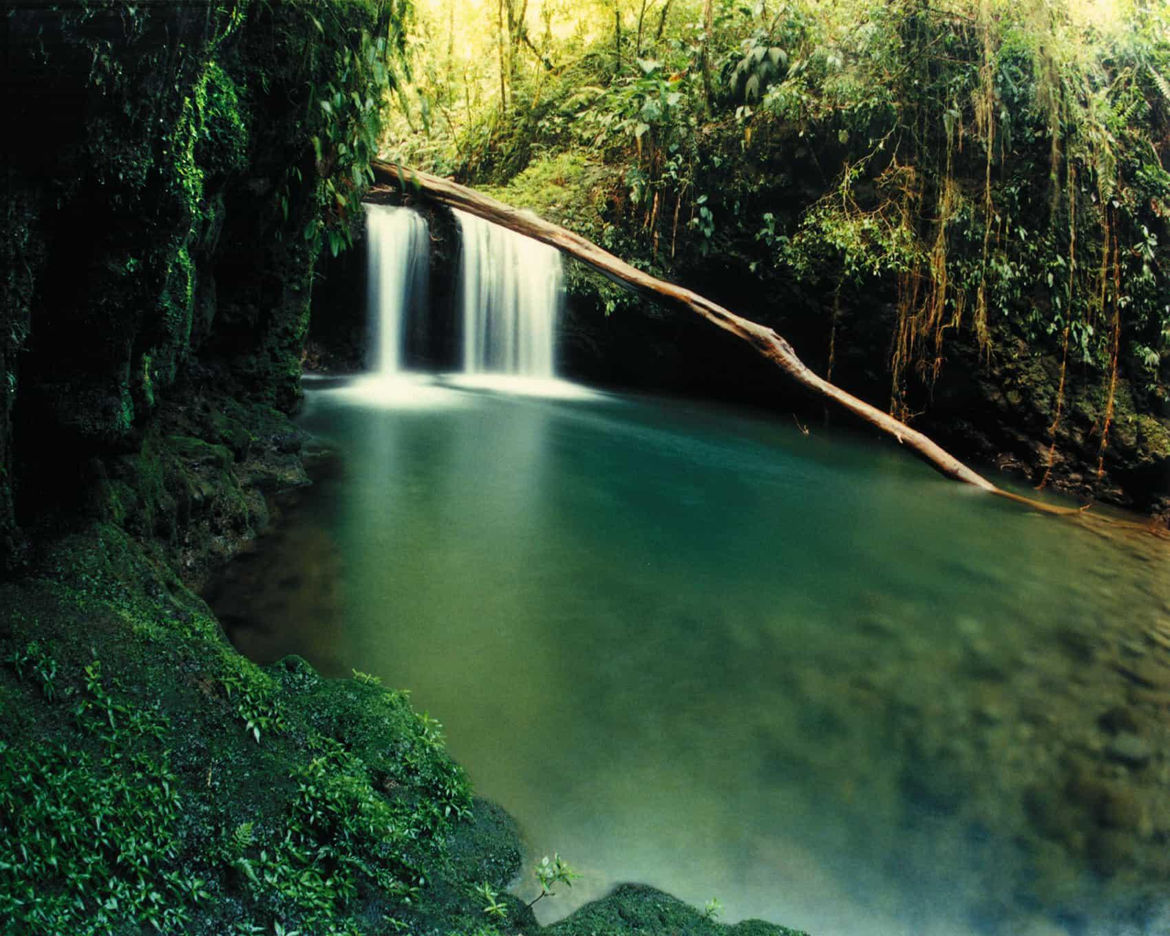 Braulio Carrillo National Park
