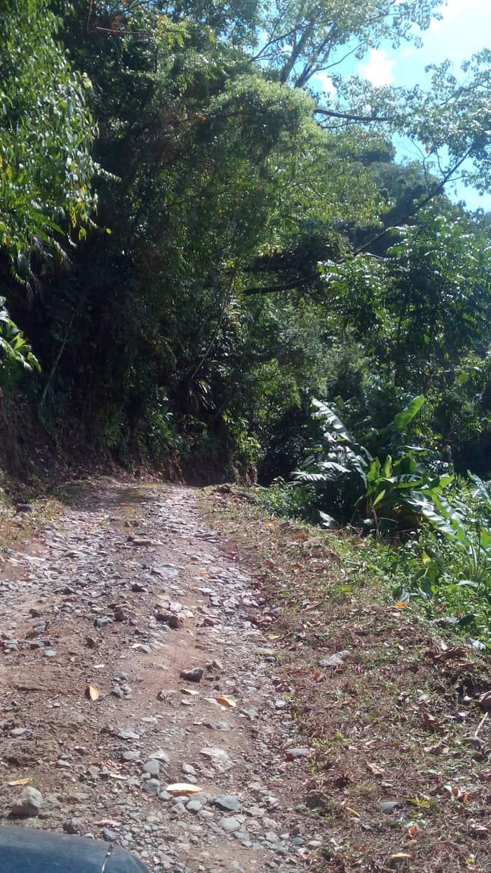 Steep hill on the way to Luna Lodge.