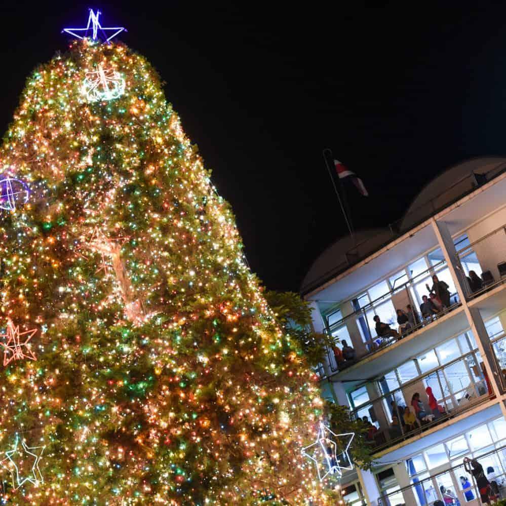 Christmas Tree San Jose