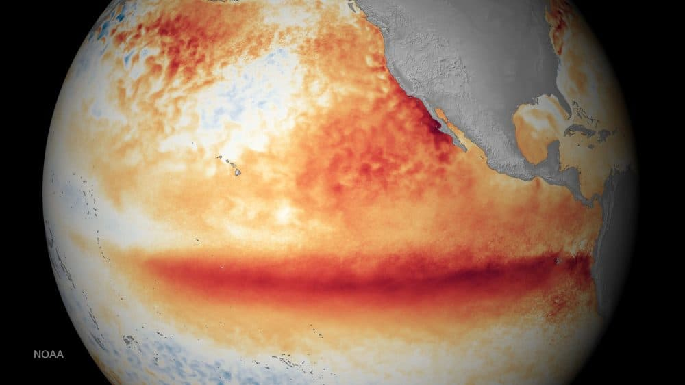 global temperature trends: NOAA sea surface temp photo
