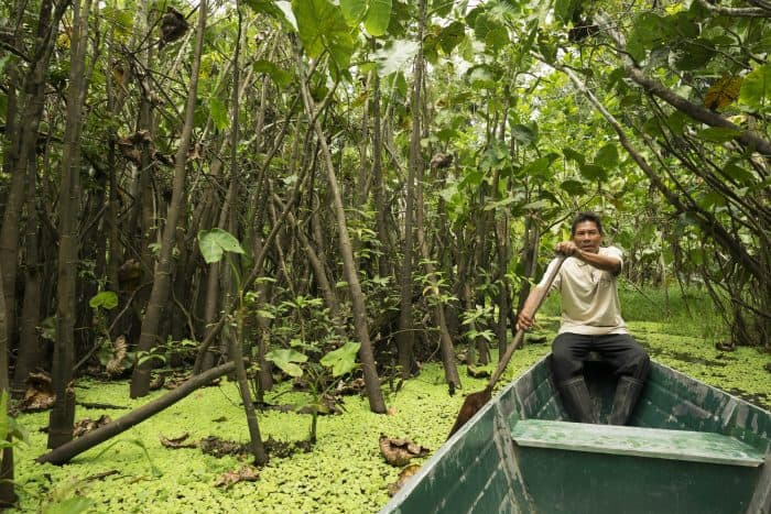 Amazon: In the swamps with Don Julio.