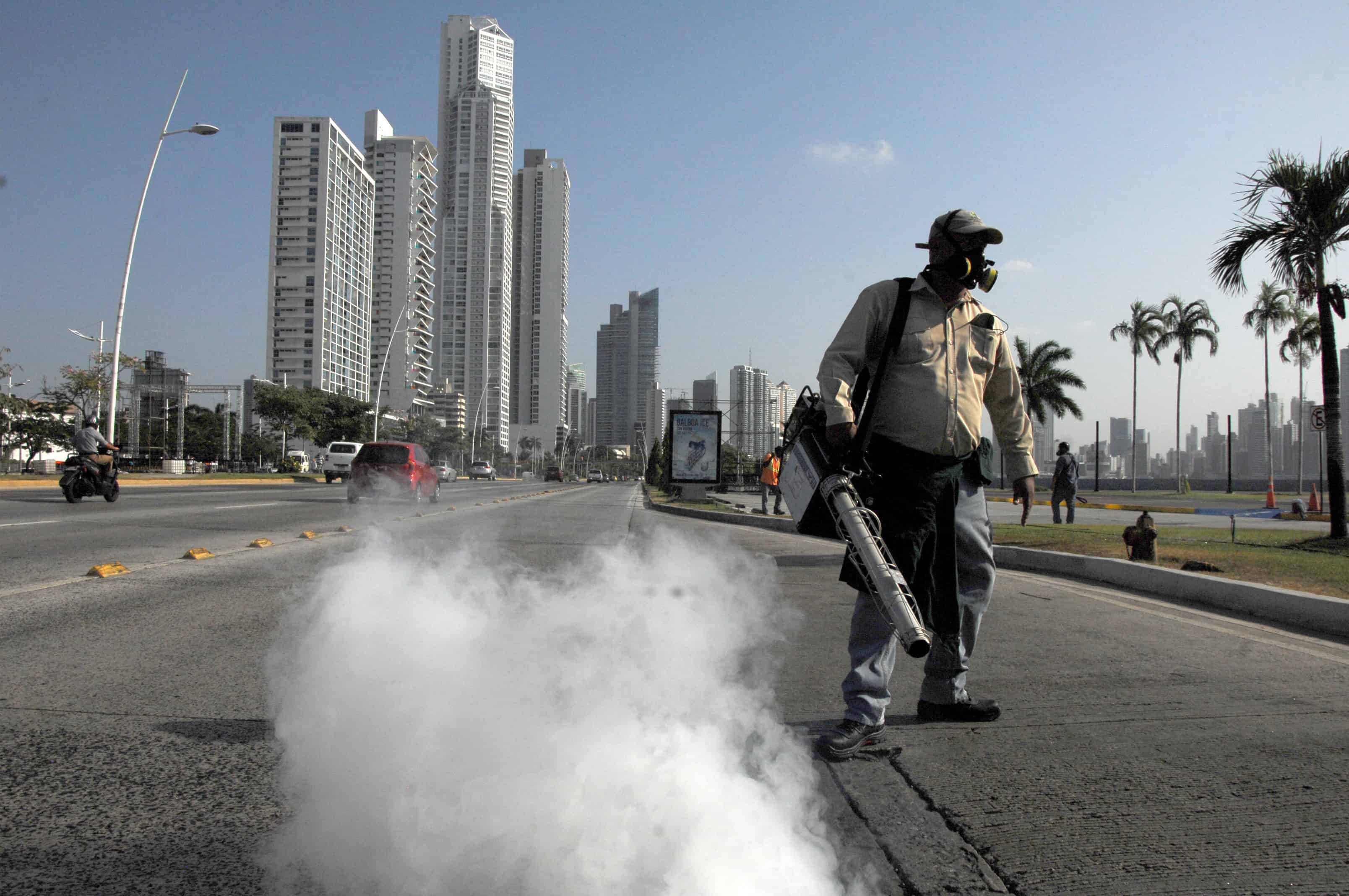 Panama Zika virus | GM mosquitoes