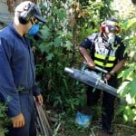 Dengue, chikungunya cases in Costa Rica up by over 600 percent