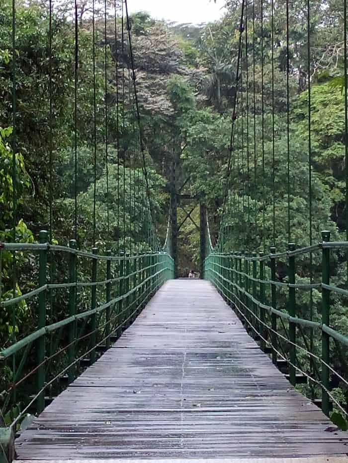 Hanging bridge across the Río Puerto Viejo.