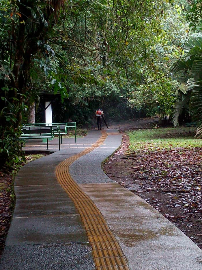 Leaf blower in paradise? Concrete trail at La Selva designed for disabled access.