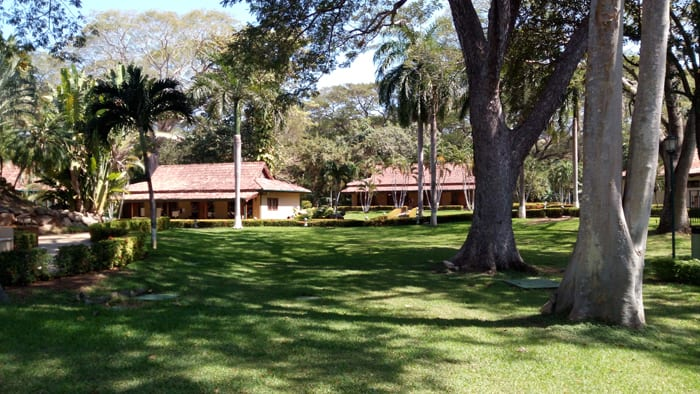 Grounds at Casa Conde.