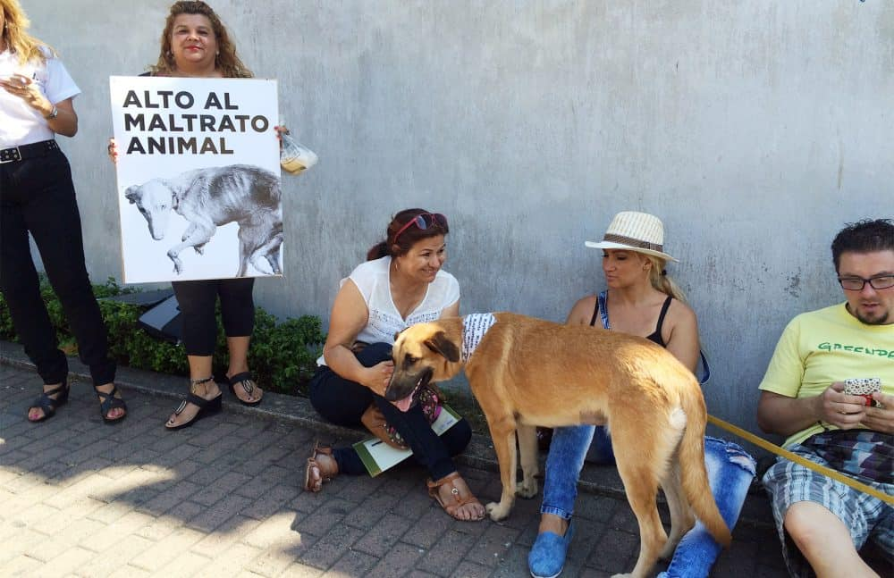 Demonstration pro Animal Welfare Bill. Mar. 3, 2016.