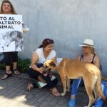 Costa Rica moves to set prison sentences for animal cruelty
