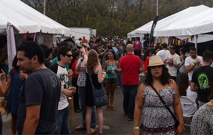 crowd at craft beer festival