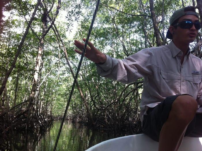 Boa Gamboa explains mangroves.