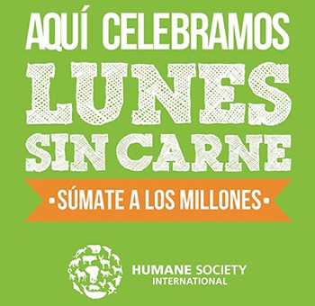 Meatless Monday / Lunes sin Carne