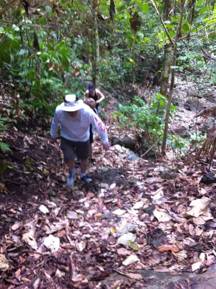 Murphy & Co. tackle a trail in Matapalo.