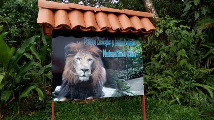 A sign at the entrance to the zoo features its most exotic inhabitant, Kivu the lion.