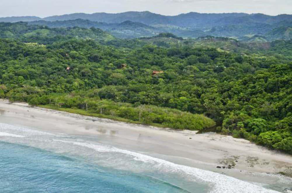 Mel Gibson Barrigona Estate Costa Rica