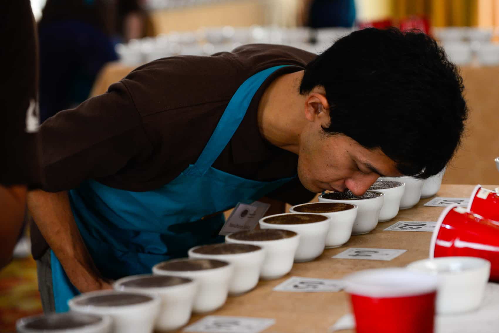 Coffee judging