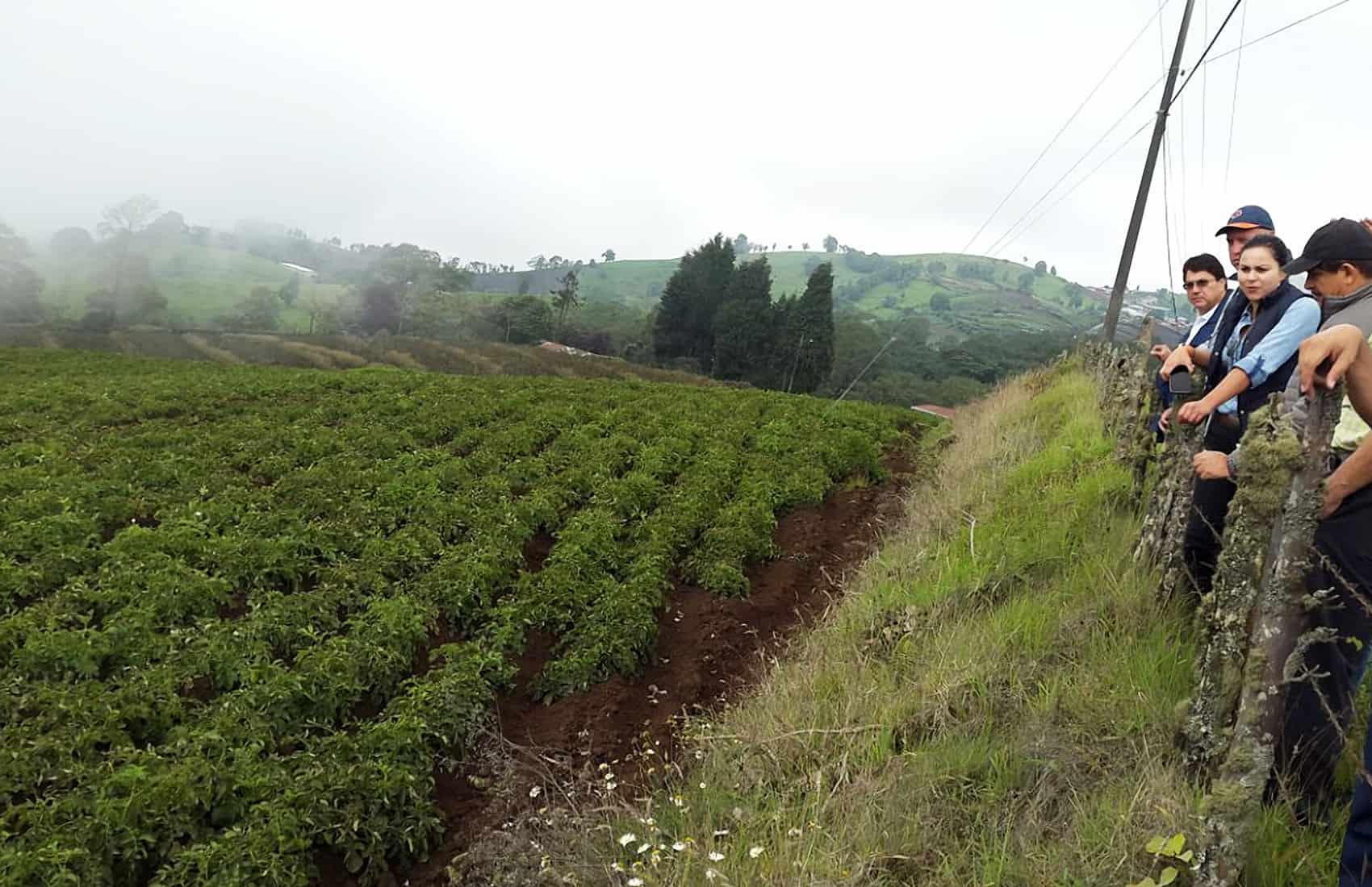 Farms north of Cartago province. May 27, 2016.