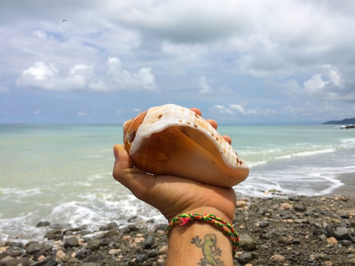 I tried making a call on this conch, but apparently it was a one-way channel.