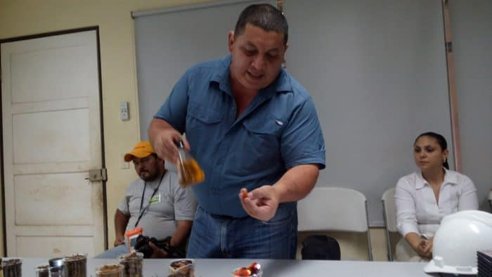 Julio Chinchilla, a foreman at the Palma Tica plant, shows off the fruit of the African palm and the oil that is extracted from it.