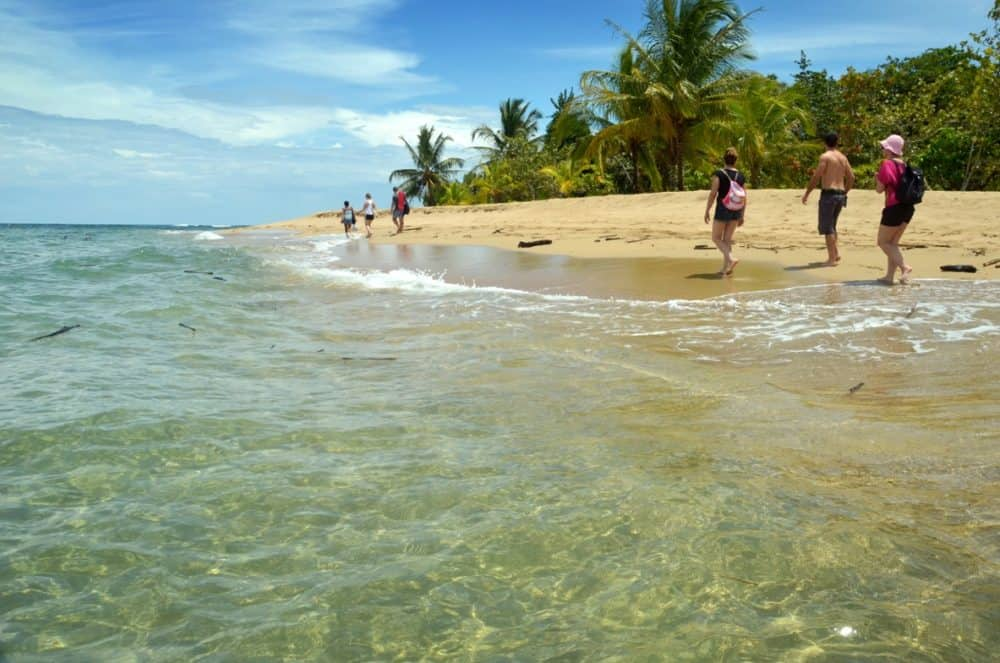 Punta Uva Beach on Costa Rica's Caribbean coast: It's hard not to like this place.