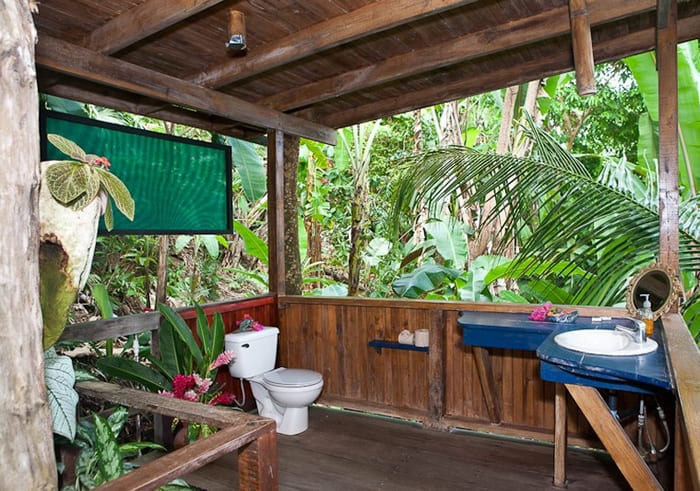 En suite rain forest bathroom, with shower head hanging from the ceiling.